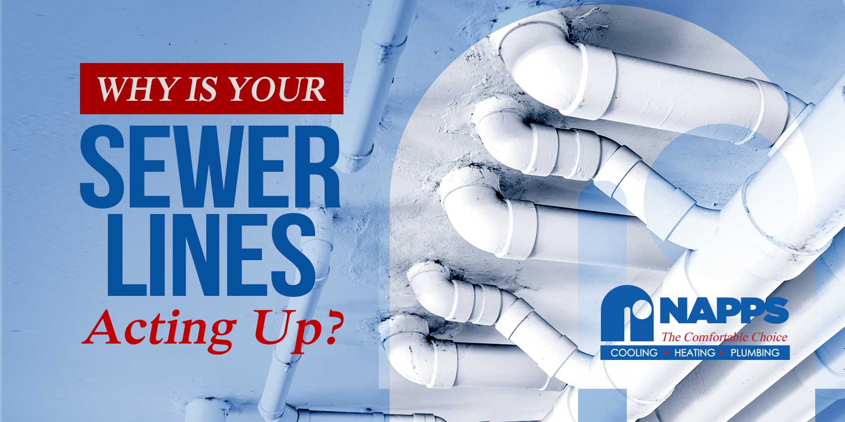 Why Is Your Sewer Lines Acting Up?