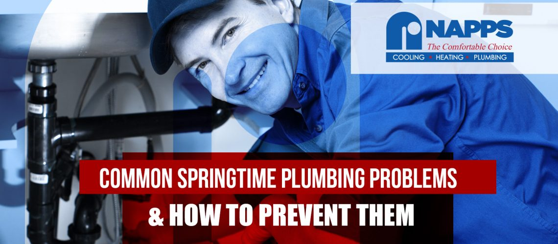 Common Springtime Plumbing Problems & How To Prevent Them
